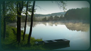 Harrison fishery, your pond and lake stock specialists.